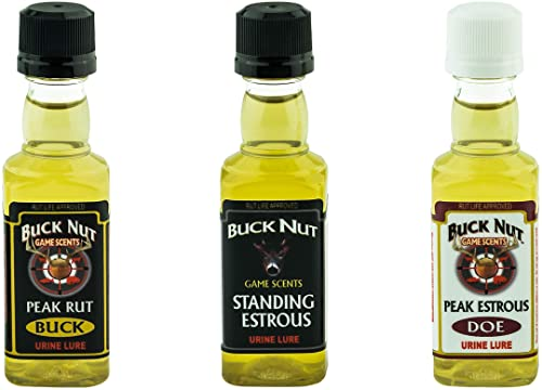 Buck Nut Game Scents Certified Standing Estrus with Real Buck and Doe Urine Bottled Fresh