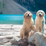 Best Lakes in Canada