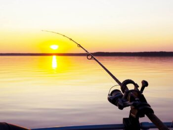 The Difference Between Casting and Spinning Rods