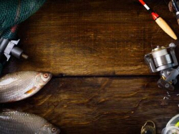 What Weight Fly Rod for Trout?